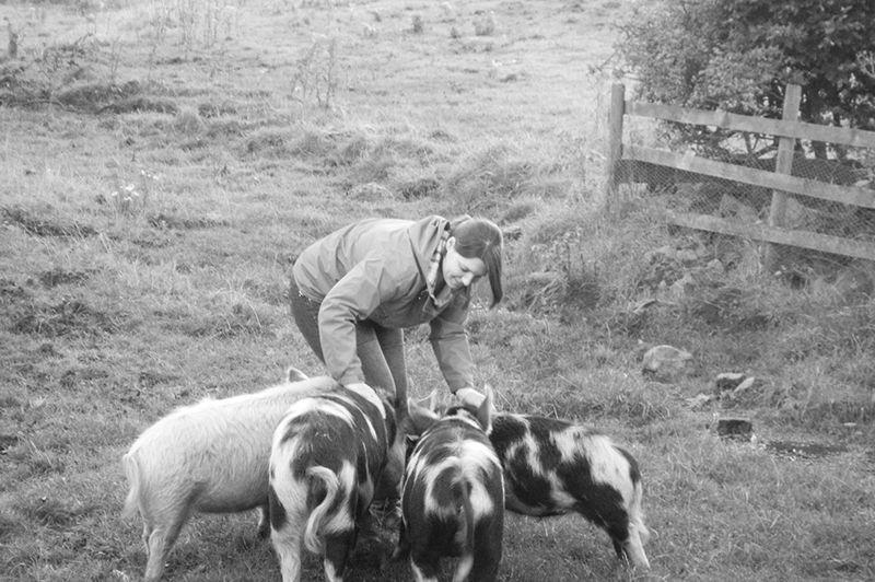 Farm/Wildlife 12